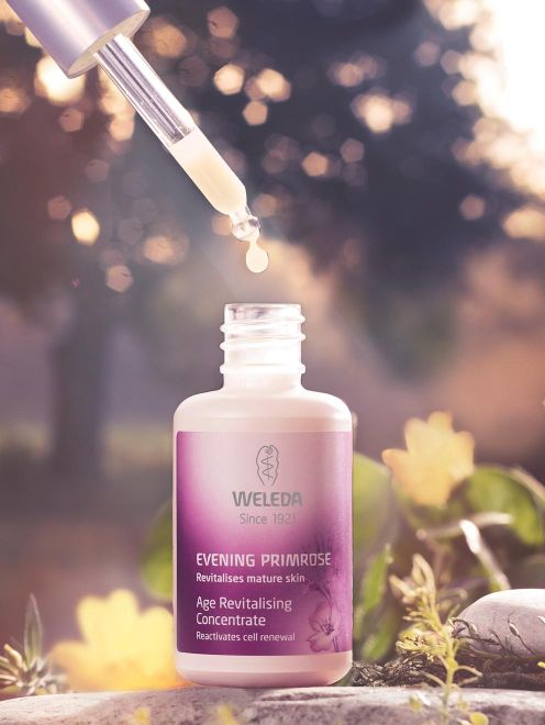 Image of Evening Primrose Concentrate
