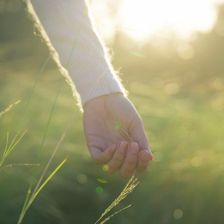 Hand holding grass - in touch with nature